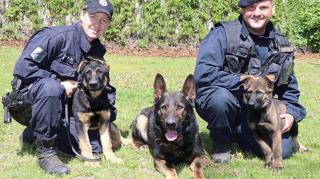 Kladenští psovodi mají nové kolegy, Dericka a Janka.