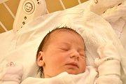 PAVLA HUMLOVÁ, DŮL LIBUŠÍN. Narodila se 9. ledna 2018. Po porodu vážila 3,03 kg a měřila 48 cm. Rodiče jsou Alena Kolmanová a Jiří Huml. (porodnice Kladno)