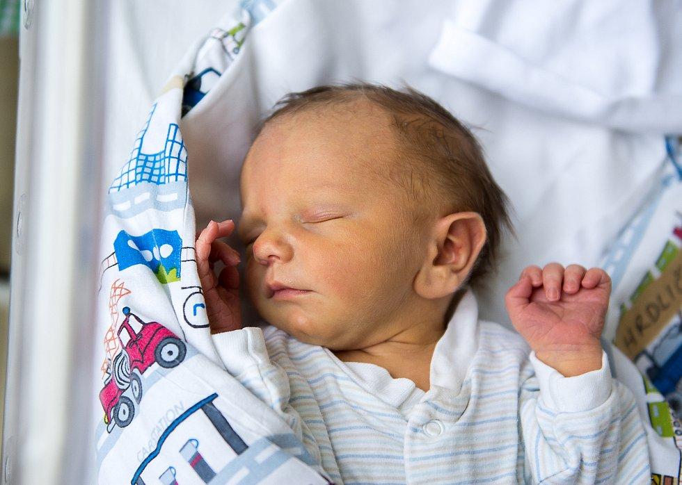 Matyas Hrdlička se narodil v nymburské porodnici 1. ledna 2021 v 9:02 hodin s váhou 2950 g a mírou 48 cm. Maminka Pavlína a tatínek Martin se radují s prvorozeného chlapečka doma ve Všechlapech.