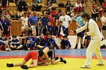 LIDICE - Sokolský pohár 2013 v zápase řecko-římském a volném stylu, 30. ročník, pořádal TJ Sokol Hnidousy-Motyčín 19. 5. 2013 (Kladno)
