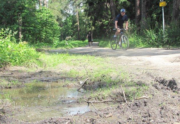 Lesní cesty a okolí cyklostezky v příměstském lese u Kladna jsou po těžbě v žalostném stavu.