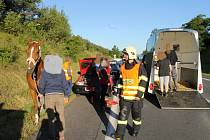 Nehoda u Slaného, kůň byl zraněn a druhý utekl do polí. Zranění utrpěl i třiadvacetiletý mladík v golfu.