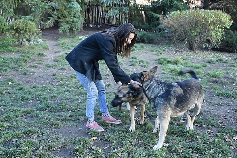 Majitelka psů Jitka Senklerová tvrdí, že oplocení je už nyní zabezpečené tak, aby psi neutíkali.