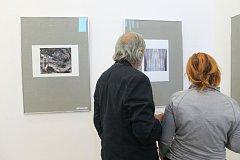 Výstavu Almanach II. si mohou lidé prohlédnout v Malé galerii České spořitelny v Kladně.