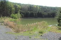 Rybník Bílichov.