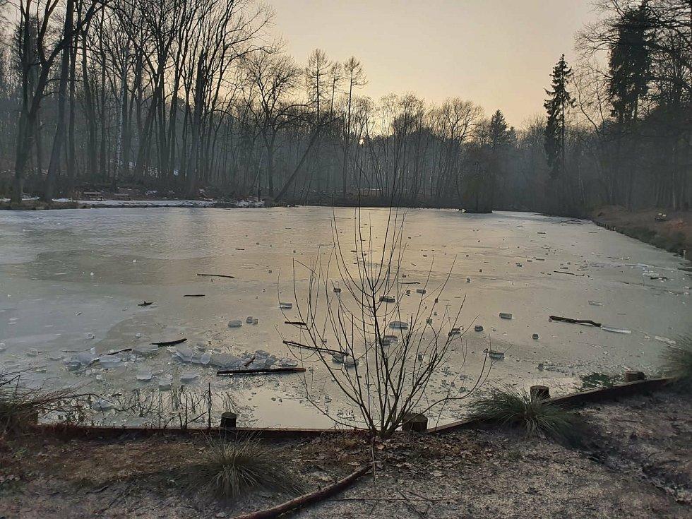 Tenký led na rybníku Bažantnice v Kročehlavech dívky neudržel. Z vody vylezly samy.