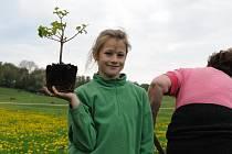 POKUS O REKORD navazuje na oslavy Dne stromů, který připadá na 20. října.  Dokazuje, že na zlepšení životního prostředí se může podílet úplně každý