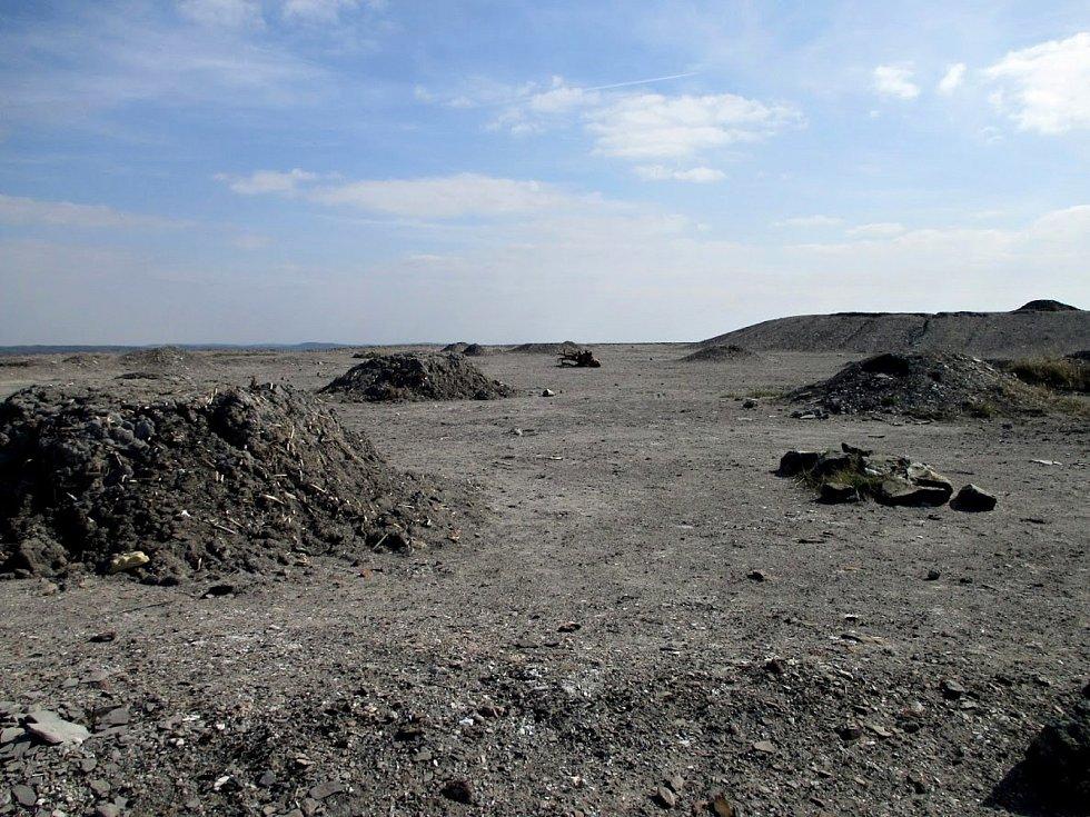 Halda neboli odval po dole Tuchlovice (dříve Nosek) po rekultivaci.