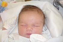 Jan Novák, Smečno. Narodil se 20. listopadu 2015. Váha 4,58 kg, míra 53 cm. Rodiče jsou Hana a Jan Novákovi, sestra Adélka (porodnice Kladno).
