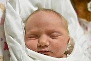 ŠTĚPÁNKA KOŠÁROVÁ, VELKÁ DOBRÁ. Narodila se 15. ledna 2018. Po porodu vážila 3,82 kg. Rodiče jsou Monika Košárová a Lukáš Košár. (porodnice Kladno)