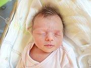 ANETA DVOŘÁKOVÁ, KOLEČ. Narodila se 8. dubna 2018. Po porodu vážila 3,04 kg a měřila 47 cm. Rodiče jsou Kamila Lojínová a Luboš Dvořák. (porodnice Slaný)