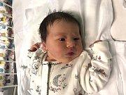 KLÁRA HAJSLOVÁ, KLADNO. Narodila se 24. prosince 2018. Po porodu vážila 3,47 kg a měřila 50 cm. Rodiče jsou Jana Hajslová a Miloš Hajsl. (porodnice Kladno)