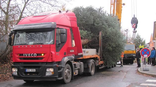 Strom byl převezen tahačem na náměstí Starosty Pavla.
