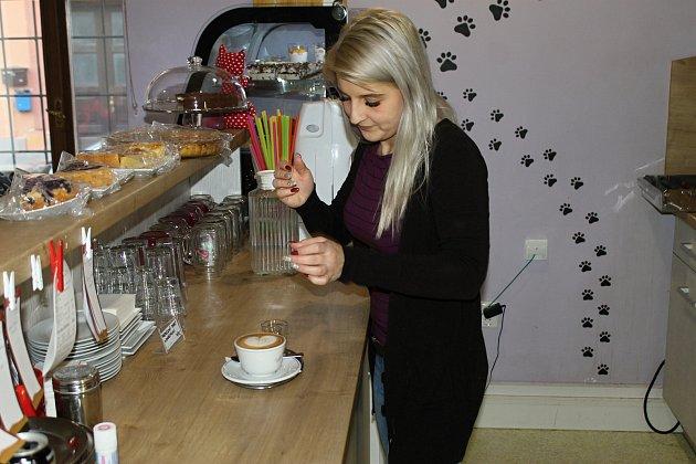 Kočičí kavárna je prima seznamka.