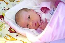 Natálka Dvořáková, Svinařov. Narodila se 13. ledna. Váha 2,5 kg, míra 43 cm. Rodiče jsou Alena a Tomáš Dvořákovi (porodnice Slaný)