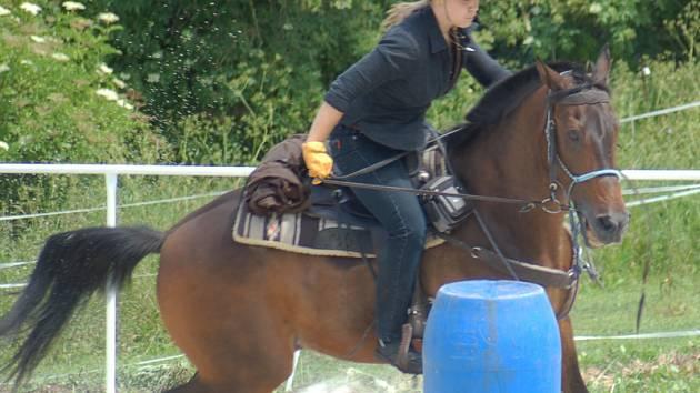 Den koní v Drchkově u Slaného.