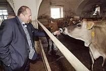 S plemenem krav Jersey se v minulých dnech při návštěvě Lán seznámil i ministr zemědělství Ivan Fuksa.
