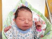 PETRA JAŠKOVÁ, HLINSKO. Narodila se 24. ledna 2018. Po porodu vážila 3,38 kg a měřila 50 cm. Rodiče jsou Jitka Rakašová a Petr Jašek. (porodnice Slaný)