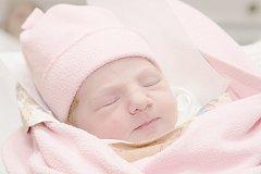 Lota Petriščáková, Kladno. Narodila se 23. listopadu 2013. Váha 3,10 kg, míra 48 cm. Rodiče jsou Klára a Milan Petriščákovi (porodnice Kladno).