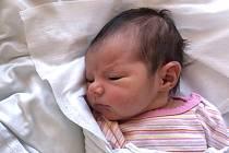 SOFIE JANKŮ, HOSTIVICE. Narodila se 1. dubna 2019. Po porodu vážila 3,12 kg a měřila 50 cm. Rodiče jsou Eva Janků a Martin Janků. (porodnice Kladno)
