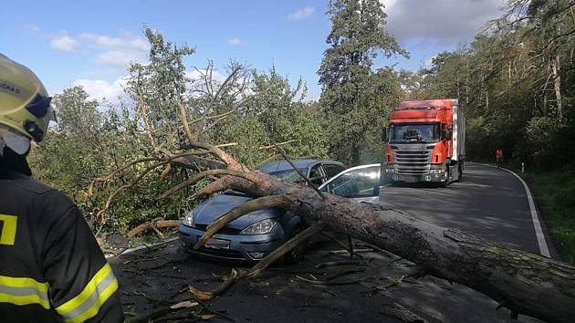 Na jedoucí auto u obce Stehelčeves spadl mohutný strom.