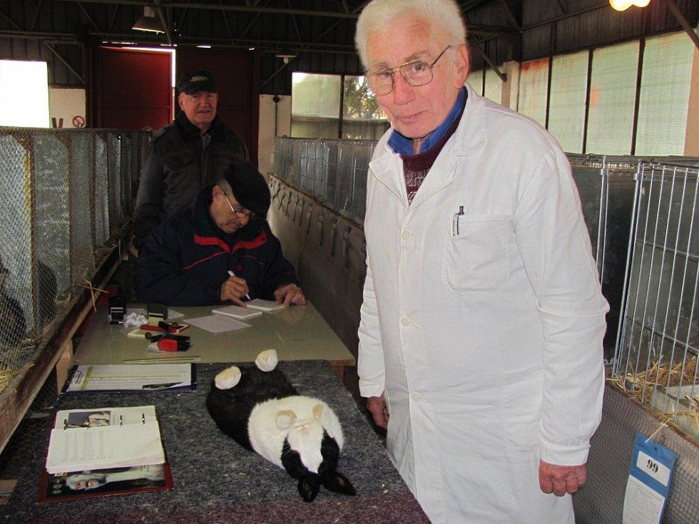 Kladenští chovatelé vystavovali ve svém areálu ve Smečenské ulici v Rozdělově.
