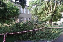 Před Základní uměleckou školou ve Slaném spadl v pátek odpoledne po bouřce dvanáctimetrový javor. Jen štěstím nikoho nezabil.