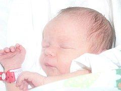 Vanesa Fejfarová, Dřetovice. Narodila se 28. října 2014. Váha 2,69 kg, míra 45 cm. Rodiče jsou Nikola Solařová a Karel Fejfar (porodnice Kladno).