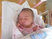 Nela Šašková, Kladno-Švermov. Narodila se 16. srpna 2017. Váha 3,66 kg, výška 51 cm. Rodiče jsou Lucie Šašková a Jakub Šašek. (porodnice Slaný)