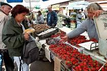 Organizátorka farmářských trhů v Kladně by ráda docílila toho, aby se akce účastnili místní zemědělci a obchodníci. Ke koupi by zde měly být ovoce, zelenina, pečivo a další domácí produkty.