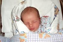 David Rajsigl, Brandýsek. Narodil se 6. srpna 2012. Váha 3,08 kg, míra 51 cm. Rodiče jsou Jindra Rajsiglová a Jiří Rajsigl. (porodnice Slaný)
