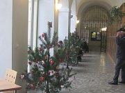 Slánskou knihovnu zaplnily soutěžní stromky.