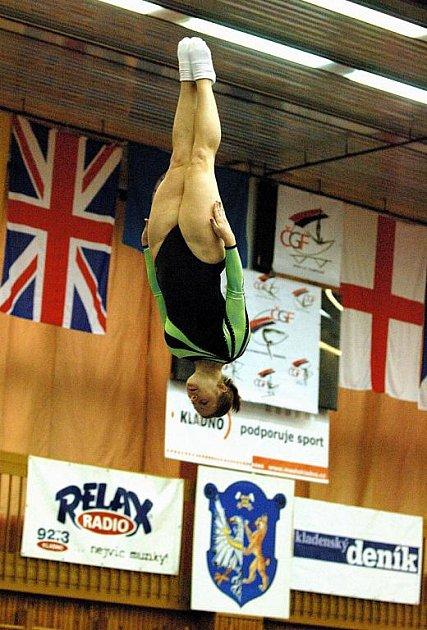 Česká reprezentantka Libuše Pilzová při jednom ze svých skoků na trampolíně.