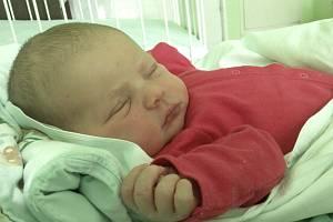 LAURA FOŘTÍKOVÁ, SÝKOŘICE. Narodila se 8. dubna 2019. Po porodu vážila 3,89 kg a měřila 52 cm. Rodiče jsou Michaela Vokounová a Martin Fořtík. (porodnice Kladno)
