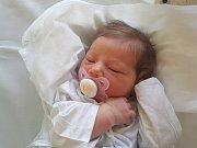 ANNA JELÍNKOVÁ, RYNHOLEC. Narodila se 4. prosince 2018. Po porodu vážila 3,1 kg a měřila 48 cm. Rodiče jsou Tereza Jelínková a Ondřej jelínek. (porodnice Kladno)