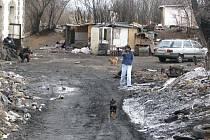 Několik romských rodin se  před lety neoprávněně nastěhovalo do budovy Českých drah v Želenicích u Kladna. Nikdo z cestujících si tu netroufá  kvůli  psům a nepořádku vystoupit.
