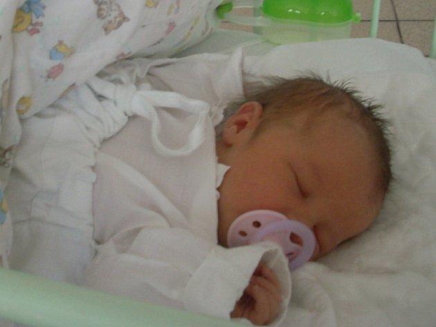 Natálie Šenkiová, 27. 2. 2008, Žilina, váha 3 kg, míra 48 cm, rodiče jsou Zdena a Marek Šenkiovi  (poradnice Kladno).