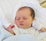 ANETA KOUKOLÍČKOVÁ, VRANÝ. Narodila se 3. května 2017. Váha 3,69 kg, míra 51 cm. Rodiče jsou Kateřina Krobová a Jiří Koukolíček (por. Kladno).