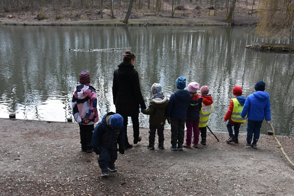 Kladenský rybník Bažantnice je plný ryb a pokračuje i úprava okolí.