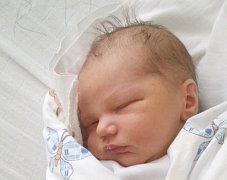 Adam Přibyl, Kačice. Narodil se 1. října 2016. Váha 3,6 kg, míra 52 cm. Rodiče jsou Lada Dvořáková a Aleš Přibyl (porodnice Slaný).