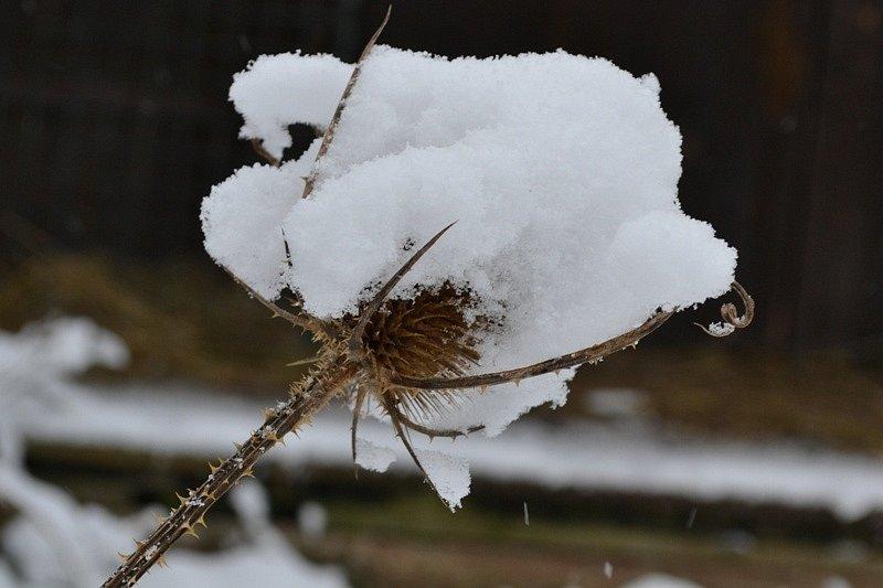 Sníh v okolí Tuchlovic na Kladensku.