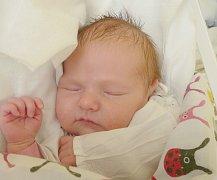 Nikola Kalíková, Kladno. Narodila se 27. října 2016. Váha 3,25 kg, míra 47 cm. Rodiče jsou Karolína a Michal Kalíkovi (porodnice Kladno).
