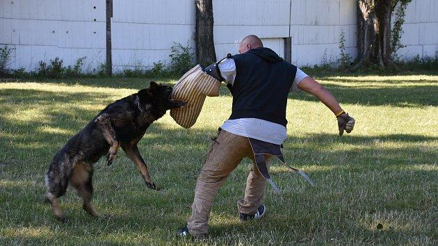 Den otevřených dveří na psím cvičišti u Ploché dráhy ve Slaném