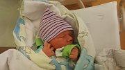 JAKUB SKALICKÝ, VINAŘICE. Narodil se 25. října 2018. Po porodu vážil 3,6 kg a měřil 49 cm. Rodiče jsou Erika Skalická a Petr Skalická. (porodnice Slaný)
