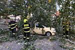 Na zaparkovaná auta spadl mohutný strom.