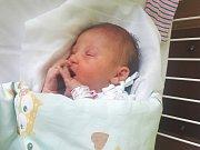 EMILY MICHLE, KLADNO. Narodila se 18. listopadu 2018. Po porodu vážila 3,216 kg a měřila 48 cm. Rodiče jsou Eva Sýkorová a Ondřej Michl. (porodnice Kladno)