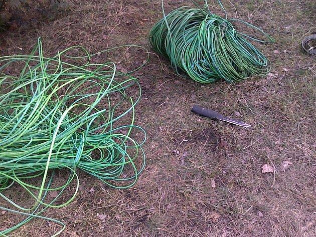 Zloději se pokoušeli odcizit na kilometr kabelů