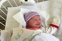 Natálie Ayshe Bocksteffelová, Kladno. Narodila se 8.  září 2019. Po porodu vážila 2,79 kg a měřila 48 cm. Maminka je. Eva Bocksteffelová a Rudolf Jimramovský (porodnice Kladno).