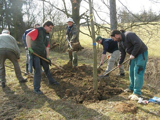 Dobrovolníci vysázeli u rybníka Bulhar v Unhošti dalších šestnáct stromů.