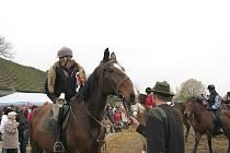 V sobotu 7. listopadu se v Horním Bezděkově sešlo několik denísek koní všech velikostí